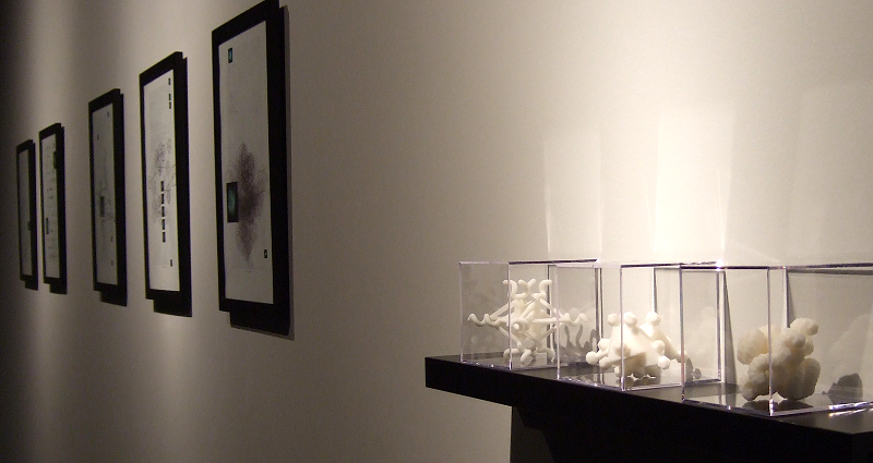 Installation shot from Santa Barbara show