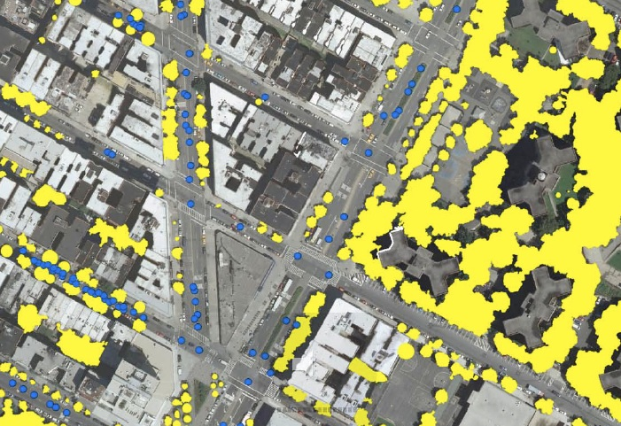 NYC LiDAR + Tree Census